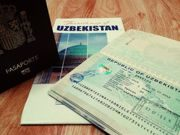 Electronic visas: how it will work (detailed instructions)